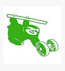 Gym Sloth - Green Photographic Print