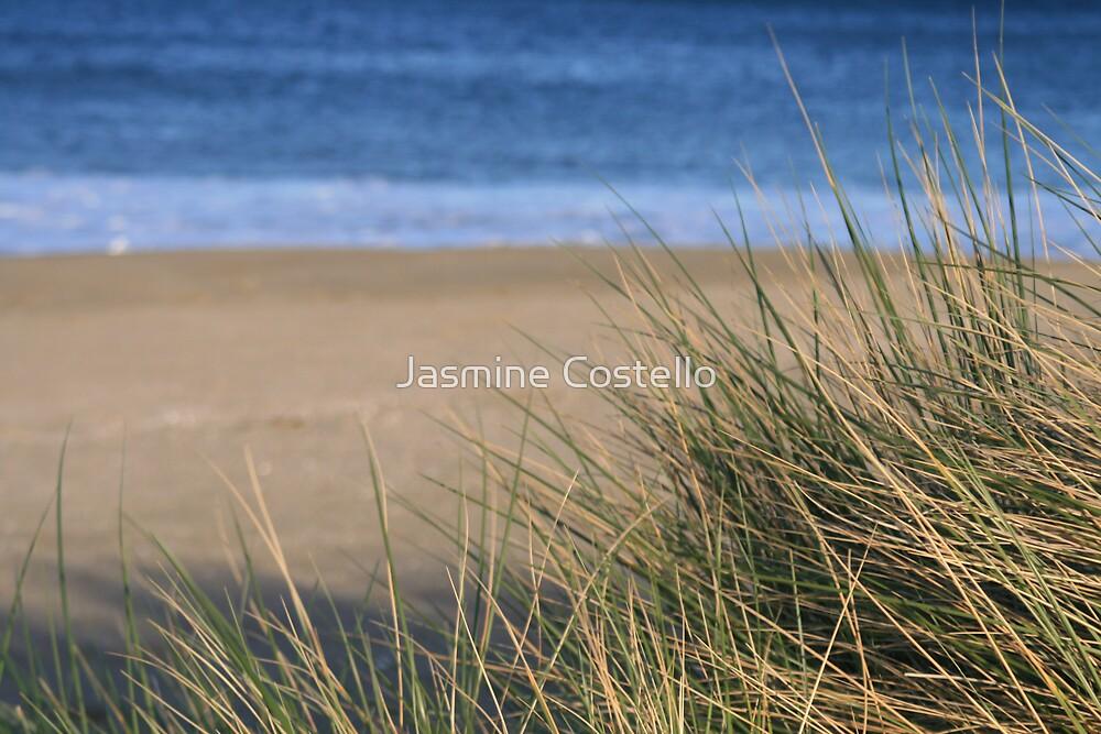 Spikey Style ~ Blackmans Bay, Tasmania by Jasmine Costello