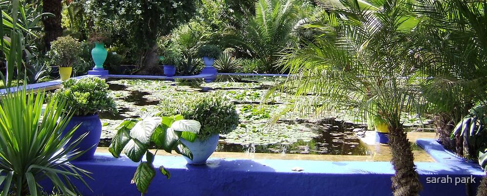 marrakech pond by sarahcro123