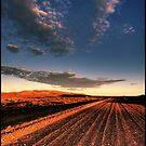 A dirty road in the outback by Federico Colalongo