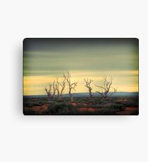 The dance of the trees Canvas Print