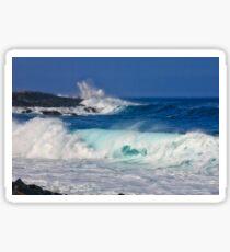 Eddie's Waves Kailua-Kona Sticker
