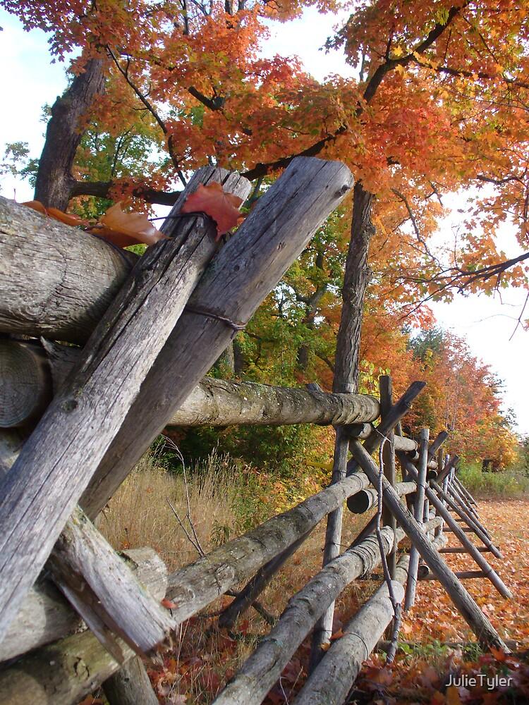 Smiths Falls in Fall by JulieTyler