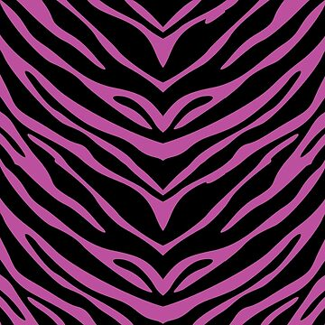 Pink N Black Zebra  by joshburt