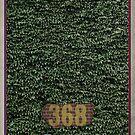 Chicago Baseball Ivy by scbb11Sketch