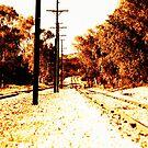 Along the Tracks by Craig Shillington