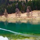 Winter Lake in Chatel by Christine  Wilson