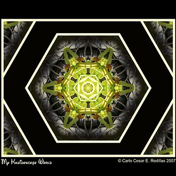 My Kaleidoscope World by carlo