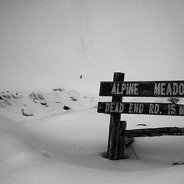 alpine meadows by hellogan