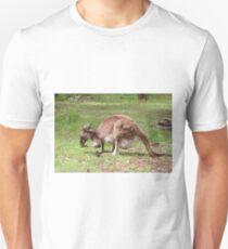 Kangaroo, Outback Australia T-Shirt