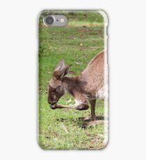 Kangaroo, Outback Australia iPhone Case/Skin