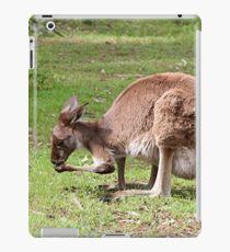 Kangaroo, Outback Australia iPad Case/Skin