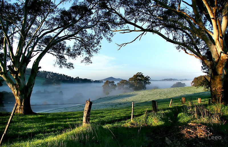 Quot Nairne Adelaide Hills Quot By Leeo Redbubble
