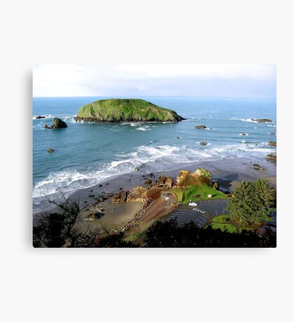 OREGON COAST NATURAL COASTLINE Canvas Print