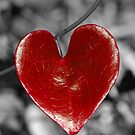 Love Heart2 (vertical) by berndt2