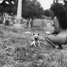 Walking the Dog by fernando