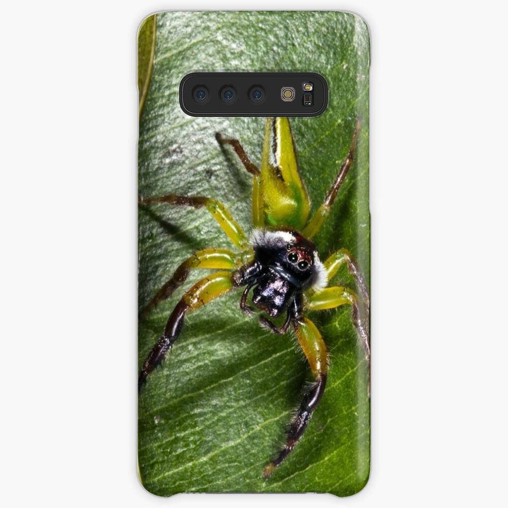 Jumping spider Case & Skin for Samsung Galaxy