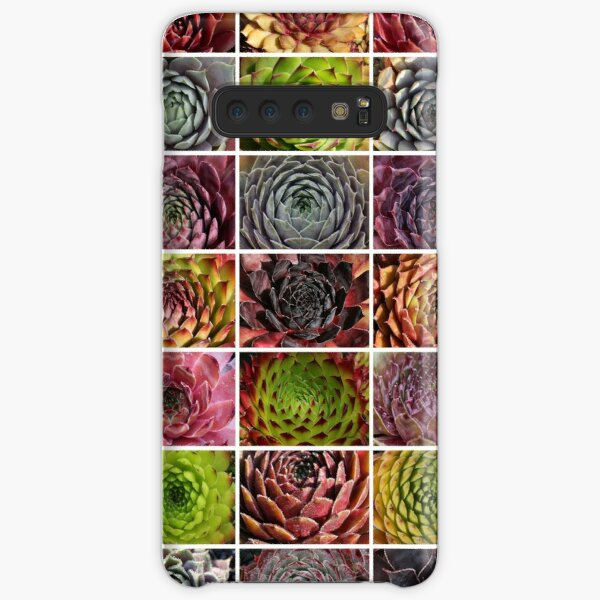 Sempervivum Collage - Houseleek - Houseleek Samsung Galaxy Snap Case