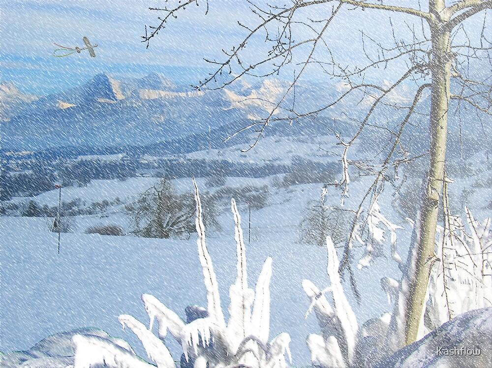 Winter Times by Kashflow