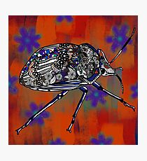Patterned Insect on Rust Flowers Photographic Print