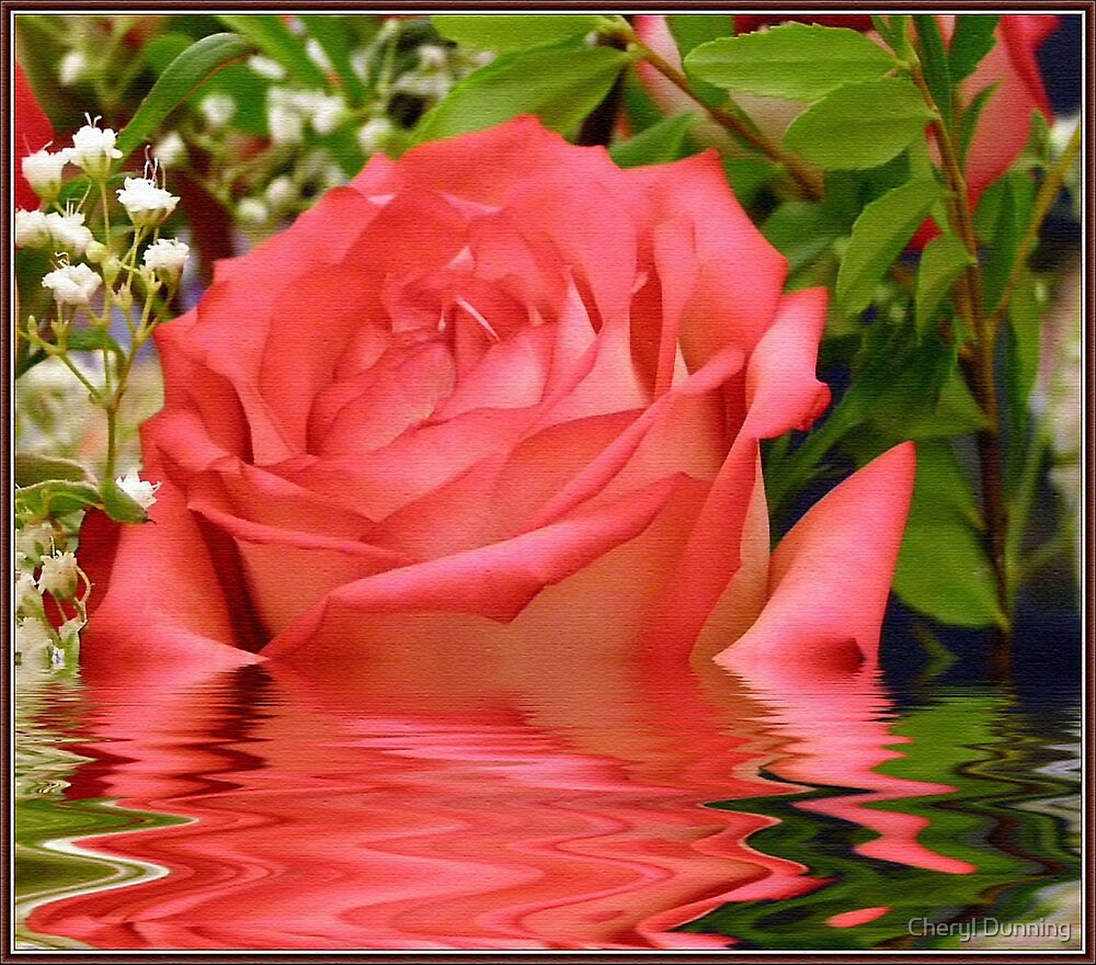 a rose for you by Cheryl Dunning