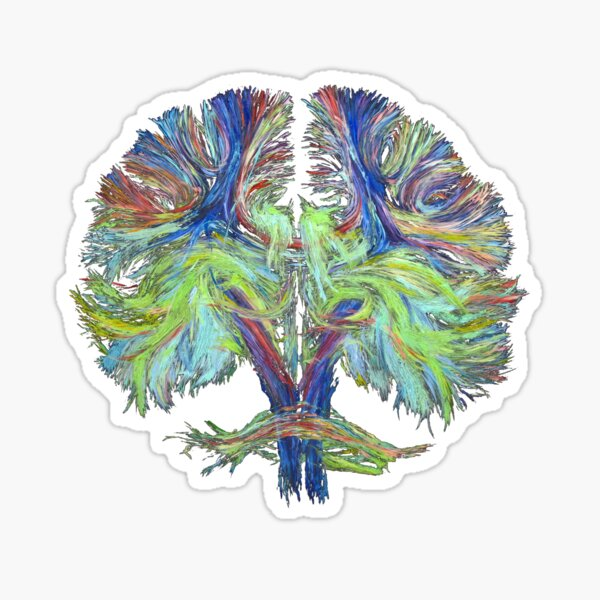 Tractography on black Sticker