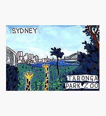 Taronga Park Zoo, Sydney Photographic Print