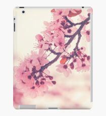 094 - Cotton candy iPad Case/Skin