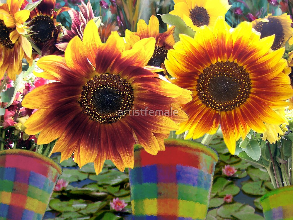 Flowers for Sale by artistfemale