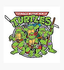 Teenage Mutant Ninja Turtles - 1987 Cartoon Photographic Print