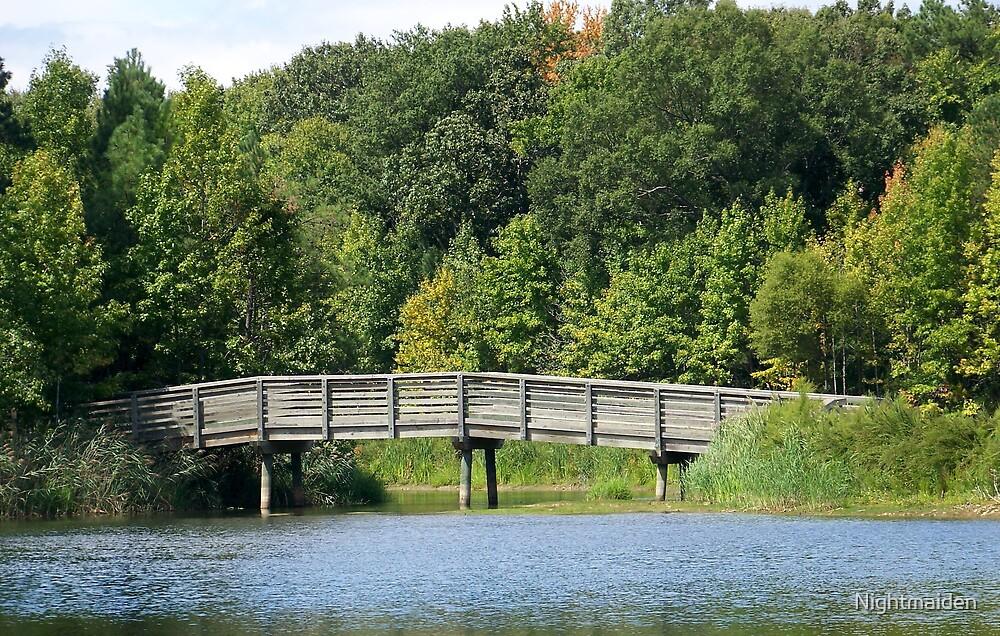 The Bridge by Nightmaiden