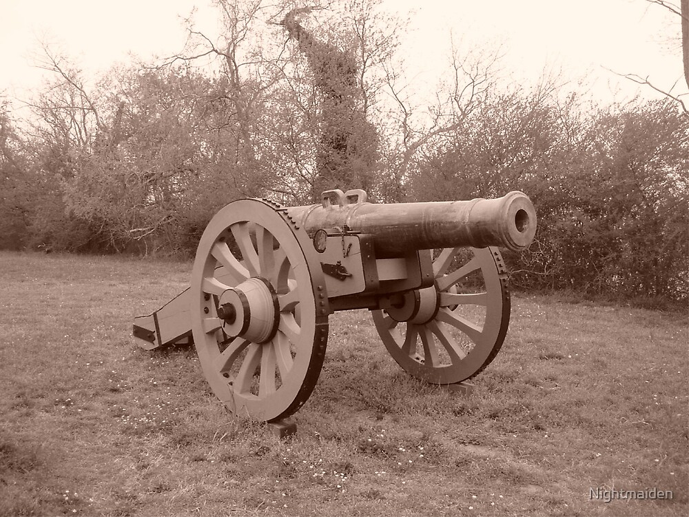 Cannon On The Field by Nightmaiden
