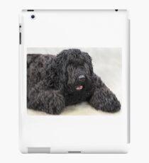 Big Shaggy Dog iPad Case/Skin