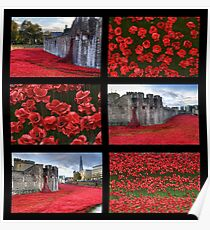 Poppies at the Tower collage Poster