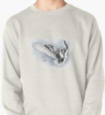 Lazer owl Pullover