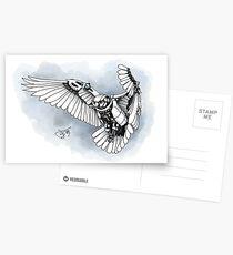 Lazer owl Postcards