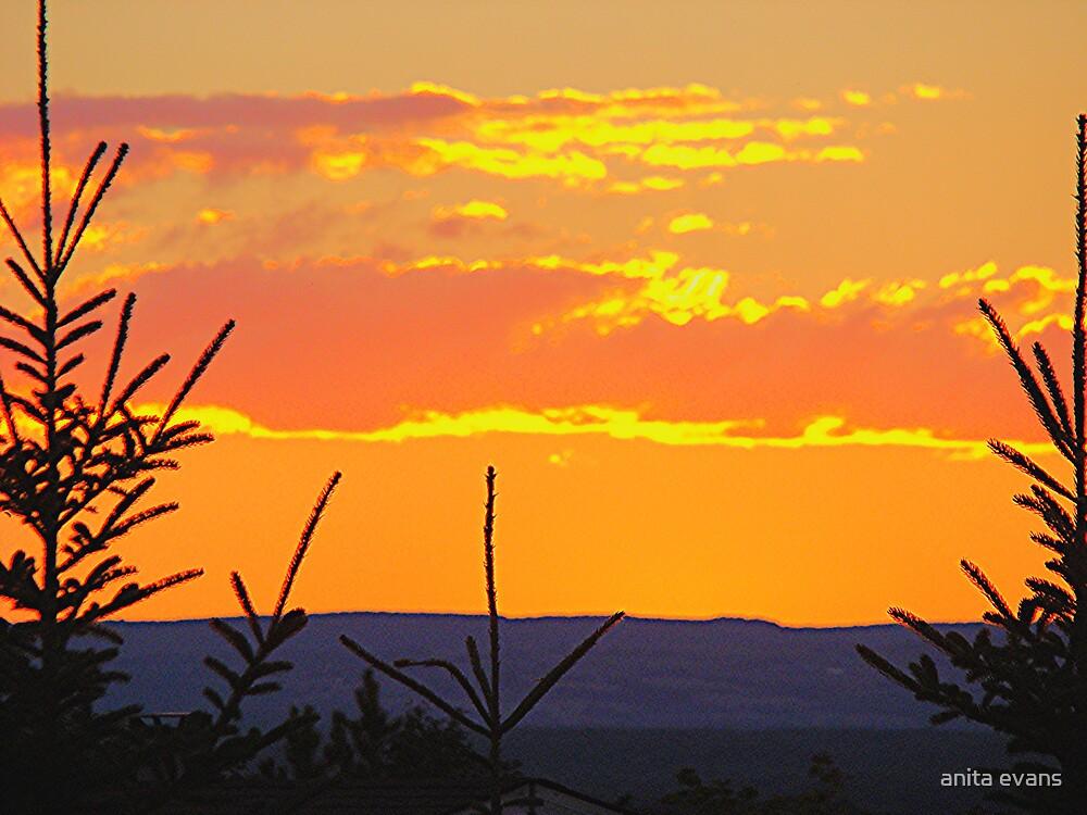 blazing sunset by anita evans