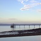 Classic Clevedon by MagsArt