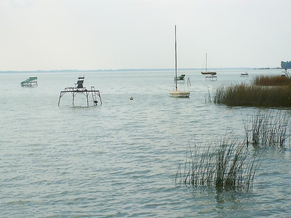 Lakeside dawn by Plectrhelminthus
