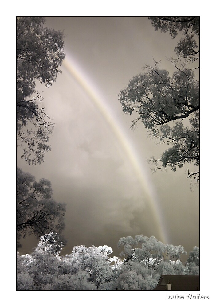 Infra Red Rainbow by Louise Wolfers