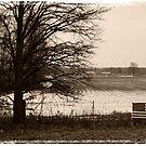 Ohio by Dan Bronish