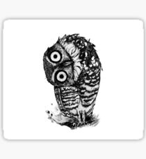 Bernie the Borrowing Owl Sticker