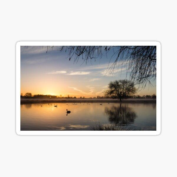 Sunrise at Bushy Park Sticker