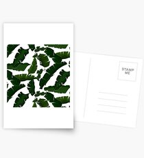 Banana leaves Postcards