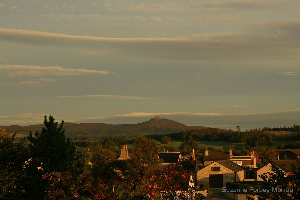 Bennachie by Suzanne Forbes-Murray