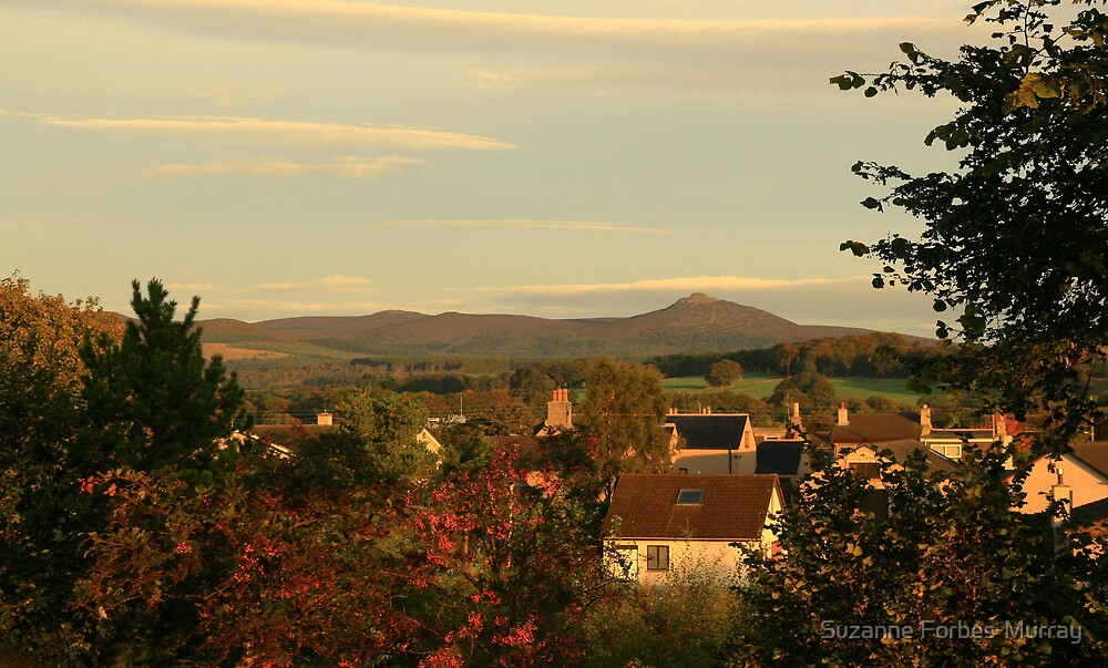 Kemnay with Bennachie by Suzanne Forbes-Murray