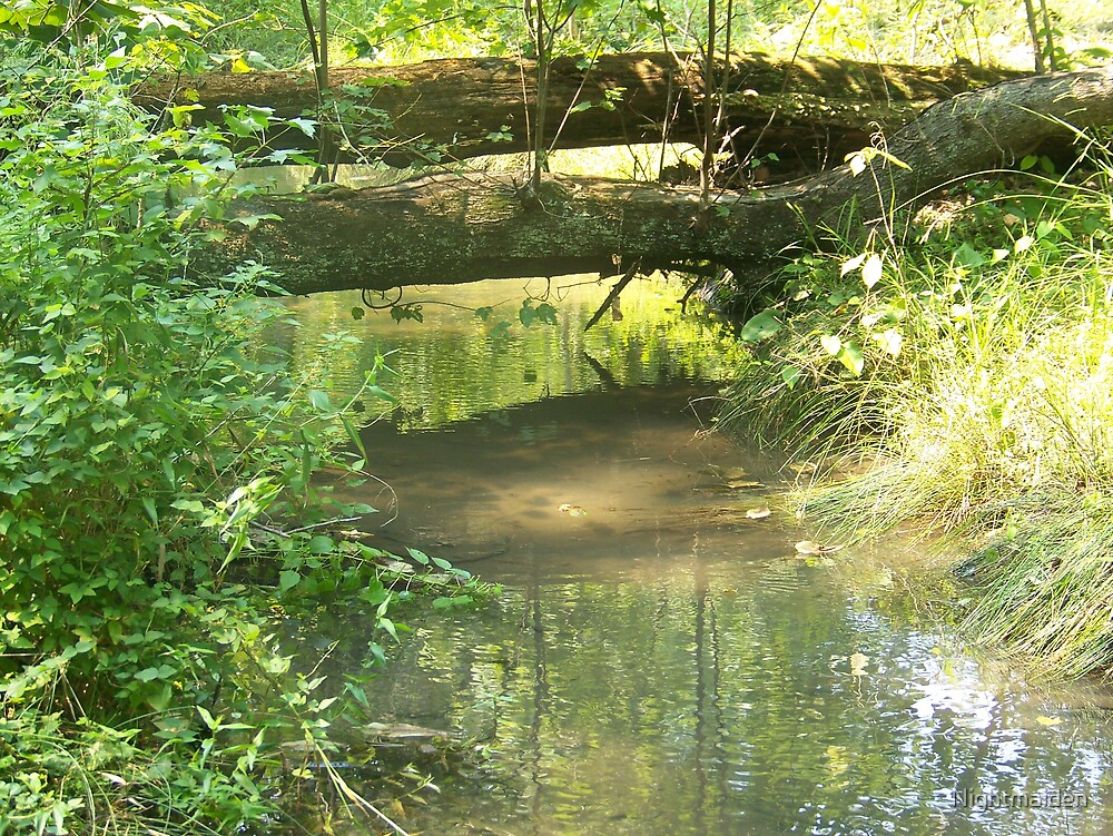 Natural Bridge by Nightmaiden