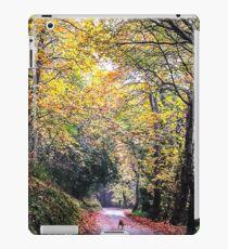Autumn walks iPad Case/Skin