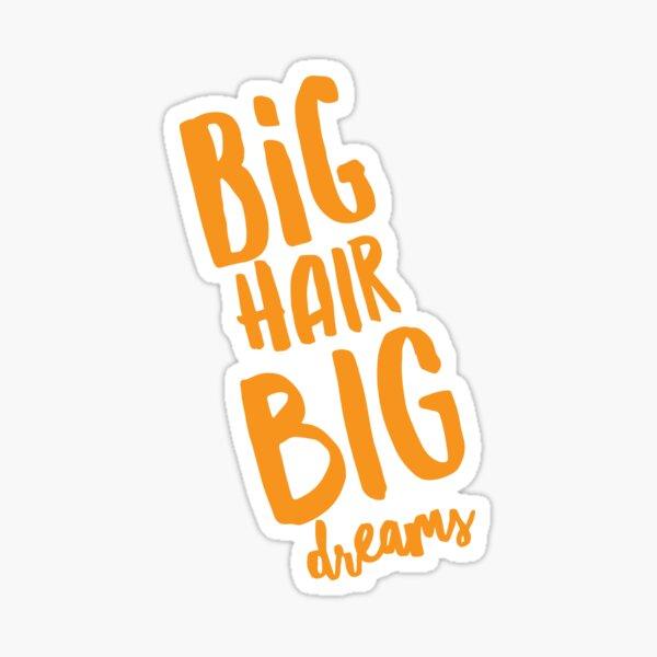 Big Hair Big Dreams sticker Sticker