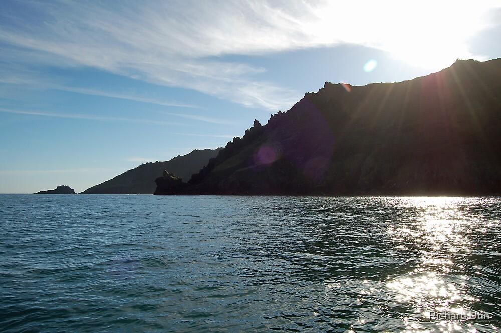 Sunshine coast by Richard Utin